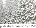 USA,California,View of Snowy Tees,north of Oakhurst 51520159