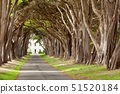 USA,California,Point Reyes National Seashore,Road to Historic RCA building 51520184