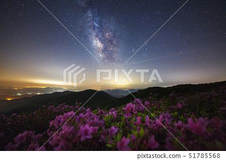 은하수,철쭉,황매산,합천군,경남 51785568
