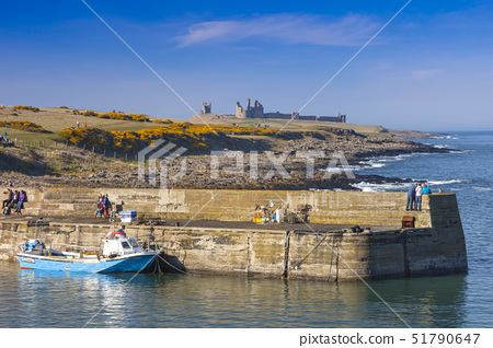 Craster Harbour and Dunstanburgh Castle, Northumberland, England, United Kingdom, Europe 51790647