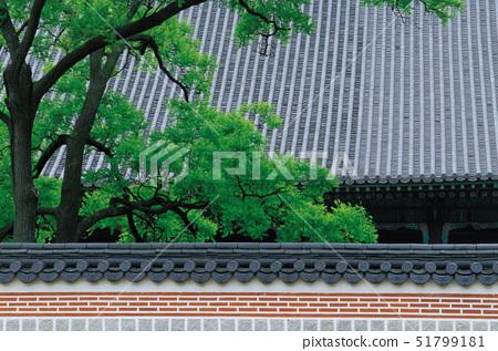 경복궁,종로구,서울 51799181
