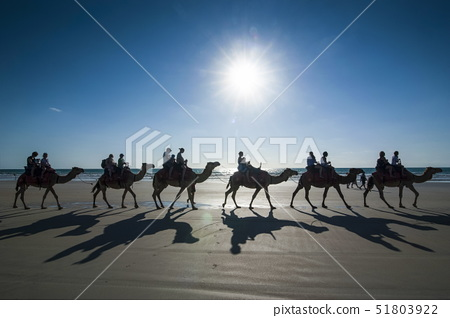 Silhouettes of tourists riding on camels on Cable Beach, Broome, Western Australia, Australia, Pacif 51803922