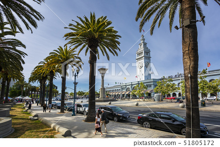 Ferry Building and palm trees, San Francisco, California, United States of America, North America 51805172