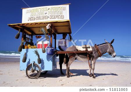 Brazil,Ceara,Canoa Quebrada beach, 51811003