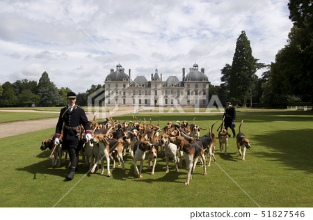 France,Loir et Cher,Chateau de Cheverny,Vol au Vent whippers who manage the pack of 90 dogs for hunt 51827546