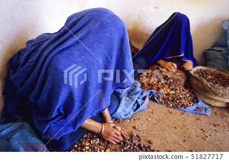 Morocco,Tioute,crushing argan skin, 51827717