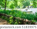 도쿄 봄의 샤 쿠지이 공원 51839975