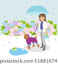 비오는 날 강아지 산책 51881674