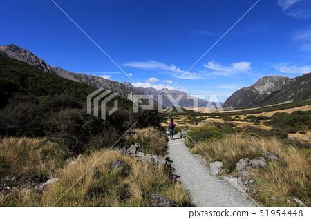 紐西蘭庫克山啄羊步道 51954448