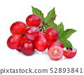 fresh red grapes with green leaves isolated on 52893841