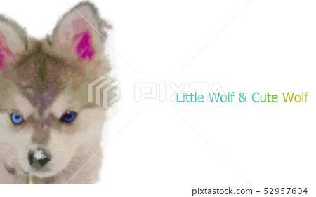 可愛漂亮的小狼插畫 52957604