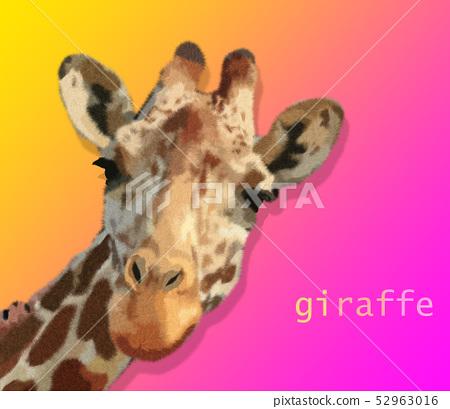好看的五顏六色的手繪長頸鹿插畫 52963016