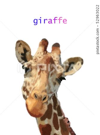 好看的五顏六色的手繪長頸鹿插畫 52963022