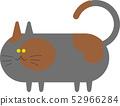 红茶猫 52966284
