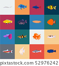 Different types of fish cartoon icons in set collection for design. Marine and aquarium fish vector 52976242