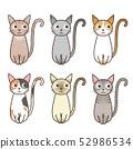 동물 / 고양이 / 편차 52986534