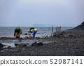 潮滩和贝类捕捉 52987141