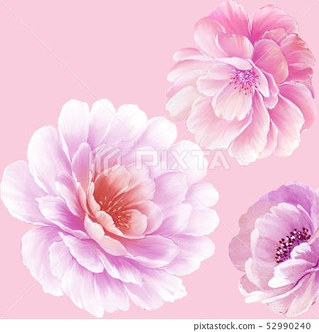 優雅的水彩大花和牡丹花 52990240