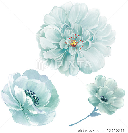 優雅的水彩大花和牡丹花 52990241