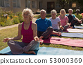 Group of senior people performing yoga in the park 53000369