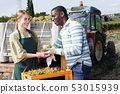 Positive man and female vineyard workers checking new grapes harvest in boxes 53015939