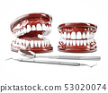 3d Illustration of human teeth, open and close mouth on white background 53020074