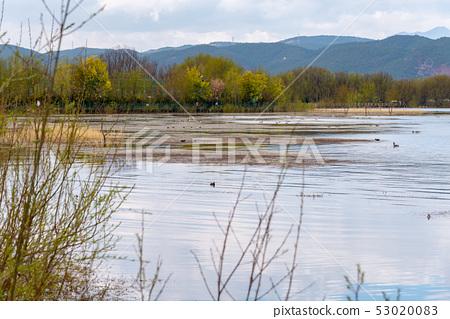 中國雲南麗江拉市海 Scenic Spots in China 國際重要濕地 自然保護區 候鳥 53020083