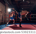 Boxers training kickboxing in the ring at the health club 53023311