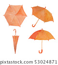 umbrella / watercolor 53024871