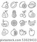 Set of fruit icons. Vector illustration Orange, Lemon, Apple, Mango and more 53029433