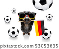soccer football dog 53053635