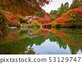Beautiful japanese garden with colorful maple 53129747