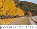 대한민국 국립대전현충원의 가을 풍경 53163310