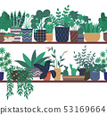 House Plants Standing on Wooden Shelf Greenhouse 53169664
