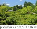 【京都府】新鲜绿色东福寺 53173630