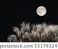 보름달과 억새 53176324