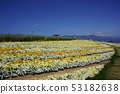 신슈 꽃 축제 2019 53182638