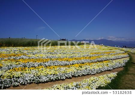 Shinshu Flower Festa 2019 53182638