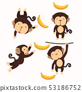 Cute little monkey cartoon character set 53186752