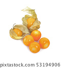 Cape gooseberry (physalis) isolated on white 53194906