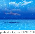 바다 53200218