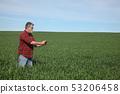 小麦 农民 农夫 53206458