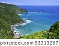 Yokonami coast view 53213297