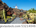Windmill on blue sky background in cactus garden, 53214046