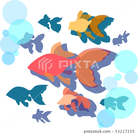 Goldfish c-6 53217255