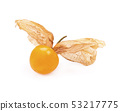 Cape gooseberry, physalis on white background 53217775