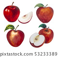 A set apple picture and painted with watercolor. 53233389