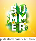 夏天 夏 花朵 53233647