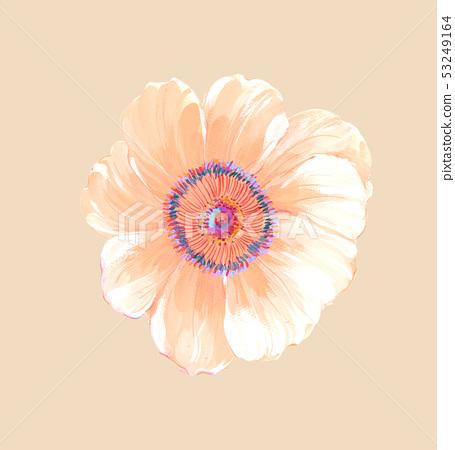 美麗的水彩玫瑰花和牡丹花 53249164