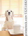 커피 타임 53251682